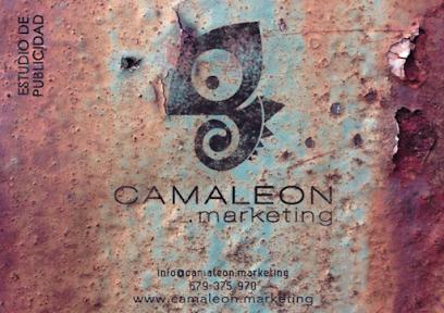 Camaleon Marketing 2